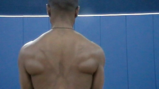 A picture of the back musculature when the latissimus dorsi, rhomboids and mid and low trapezius are fully engaged.